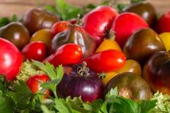 Fond frais de colorfull de tomates d'héritage, produit organique photos stock