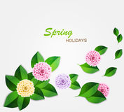 Fond frais de ressort avec les feuilles de vert et le dahlia de couleur Vecteur illustration stock