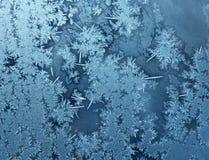 Fond froid de gel Photographie stock libre de droits
