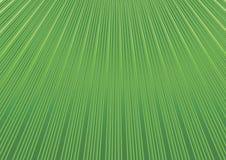 Fond géométrique abstrait avec les Lignes Vertes diagonales s floral illustration libre de droits