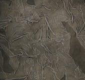 Fond gris Photo stock