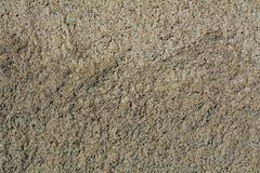Fond gris de ciment Photographie stock