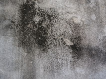 Fond gris de mur Images stock