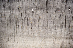 Fond gris de texture de plat d'amiante Ton chaud Photo stock