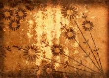 Fond grunge avec des fleurs photographie stock libre de droits
