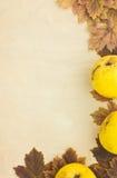 Fond grunge avec des pommes Photo stock