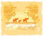 Fond grunge avec la famille d'éléphant Photo libre de droits