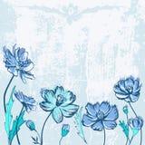 Fond grunge bleu avec des wildflowers Images stock