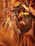 Fond grunge de blé Photographie stock libre de droits
