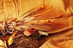 Fond grunge de blé Photos libres de droits