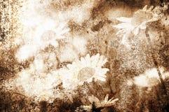 Fond grunge de fleur illustration stock