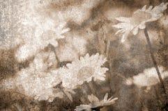 Fond grunge de marguerites en métal Images stock