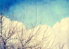 Fond grunge de nuage, texture de papier de vintage Image stock