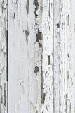 Fond grunge de planche en bois peinte superficielle par les agents Images stock