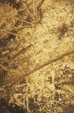 Fond grunge de terre grasse Photo libre de droits