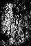 Fond grunge noir et blanc de texture Photo stock