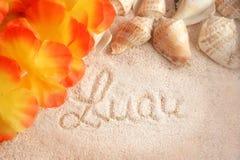 Fond hawaïen de plage Photographie stock libre de droits