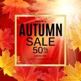 Fond heureux de jour de thanksgiving avec Autumn Natural Leaves brillant Illustration de vecteur illustration libre de droits