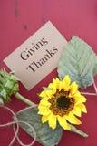 Fond heureux de thanksgiving avec les frontières décorées Photographie stock libre de droits