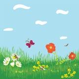 Fond horizontal sans joint avec l'herbe, fleurs Images libres de droits