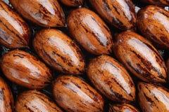 Fond humide de noix de pécan Photo libre de droits