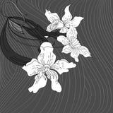 Fond initial avec des fleurs Images stock