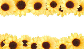 Fond jaune artificiel de tournesols Image libre de droits
