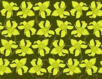 Fond jaune d'orchidée Photos libres de droits
