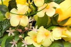Fond jaune de fleur Image libre de droits
