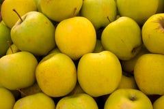 Fond jaune de pomme Photographie stock