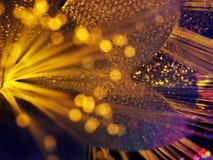 Fond jaune rougeoyant de bokeh de fleur de belle fée Image libre de droits