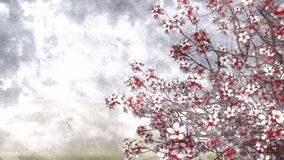 Fond 4K d'aquarelle de fleurs de cerisier de Sakura banque de vidéos