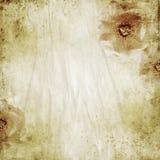 Fond l'épousant beige grunge avec des roses image stock