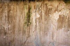 Fond : Le vieux mur de plâtre Photo stock