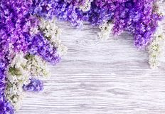 Fond lilas de fleur, fleurs roses de fleurs sur la planche en bois photographie stock libre de droits