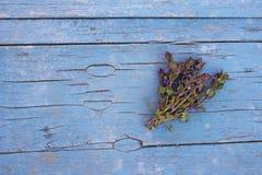 Fond lumineux d'été avec les fleurs bleues Photographie stock libre de droits