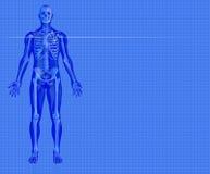 Fond médical bleu Images stock