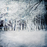 Fond magique de l'hiver avec la forêt Images libres de droits