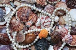 Fond marin élégant avec les éviers colorés et une ficelle de pe image stock