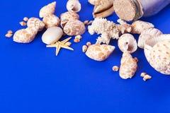 Fond marin images libres de droits