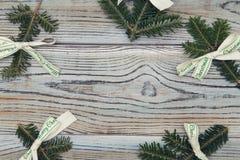 Fond minable en bois clair avec un cadre des branches impeccables Photographie stock libre de droits