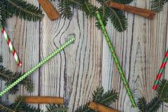 Fond minable en bois clair avec un cadre des branches, des pailles et des bâtons de cannelle impeccables Photographie stock libre de droits