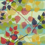 Fond multicolore de feuilles Photos libres de droits