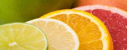 fond multicolore lumineux d'agrume, de citron, de pamplemousse et d'orange coupés images stock