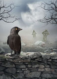 Fond mystique de Halloween avec le corbeau sur le mur en pierre photos stock