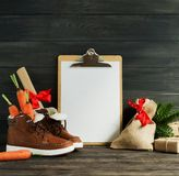 Fond néerlandais de Sinterklaas de vacances Chaussures du ` s d'enfants, carottes image libre de droits