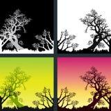 Fond naturel Image libre de droits