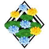 Fond naturel avec des fleurs et des feuilles de lotus Image pour la conception sur des T-shirts, copies, brochures de décorations Photographie stock