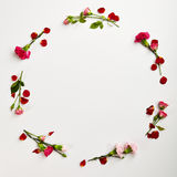 Fond naturel créatif de fleur Photos stock
