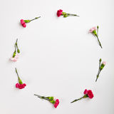 Fond naturel créatif de fleur Photo stock